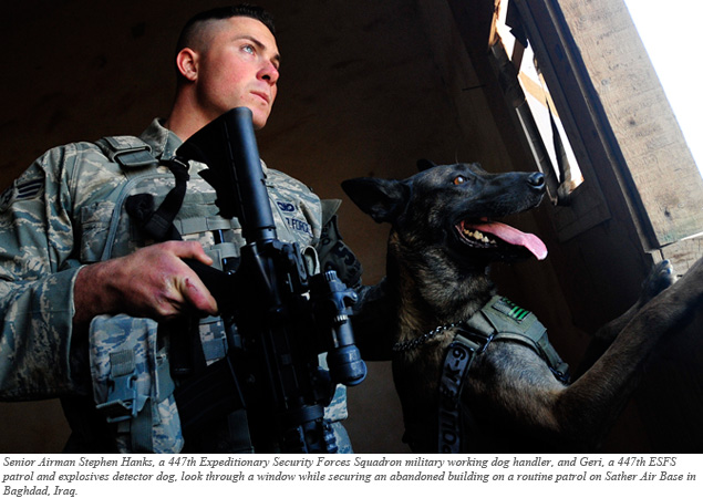 Graph On Working Service Dogs In Military